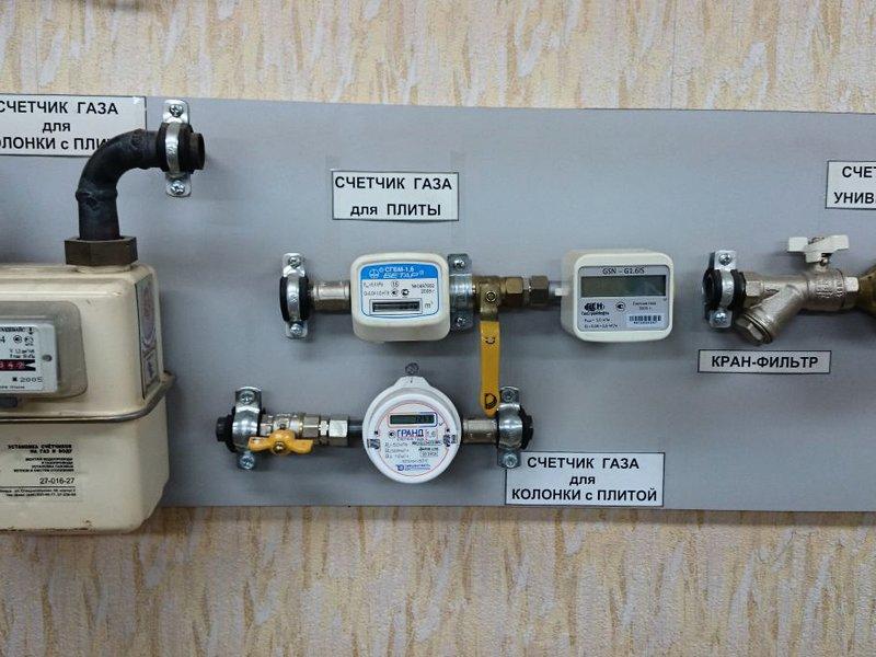 растения, уже требования к газовому счетчику в квартире метод лучше